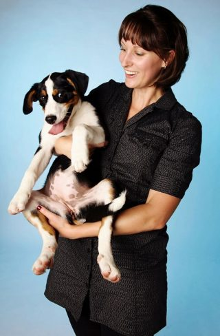 Professional pictures of dogs taken in a Guelph studio with a blue background.