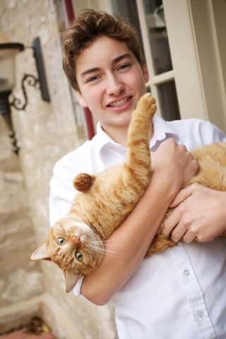 A boy holding his tabby cat in his arms, taken by pet photographer Trina Koster.