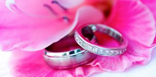 Detail photography of two wedding rings laying atop of pink flower petals for Langdon Hall Wedding photography.