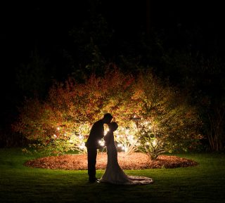 Night time wedding photography of couple kissing in front of tree.