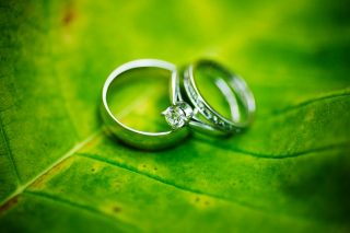 Wedding rings resting on a leaf, taken by Trina Koster.