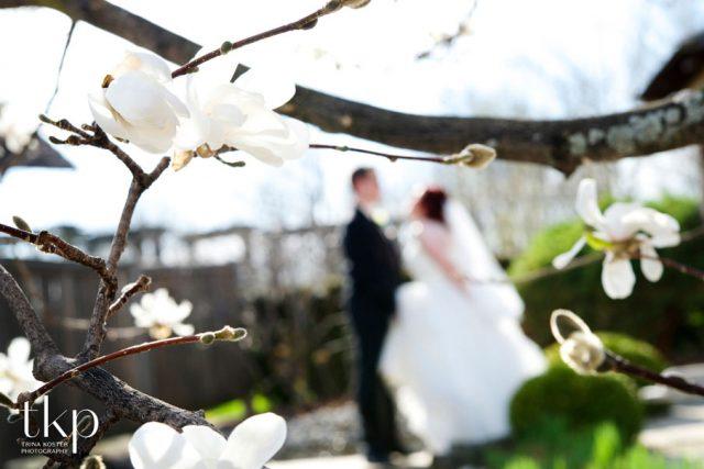 Japanese garden arboretum guelph
